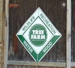 bb_tree_farm2