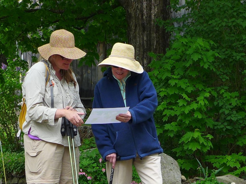 How Conservation Districts can Support Women Woodland Owners webinar @ online