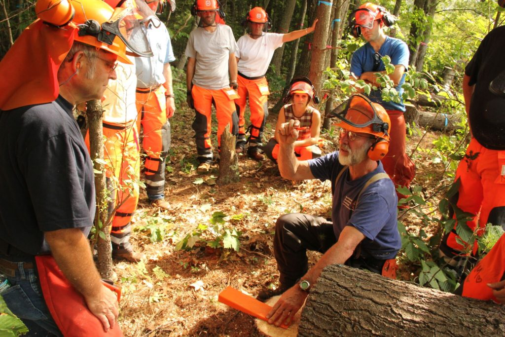 Basic Chainsaw Safety webinars @ online