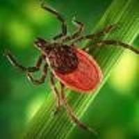 Ticks and Tick-Associated Diseases Conference @ DoubleTree Hotel