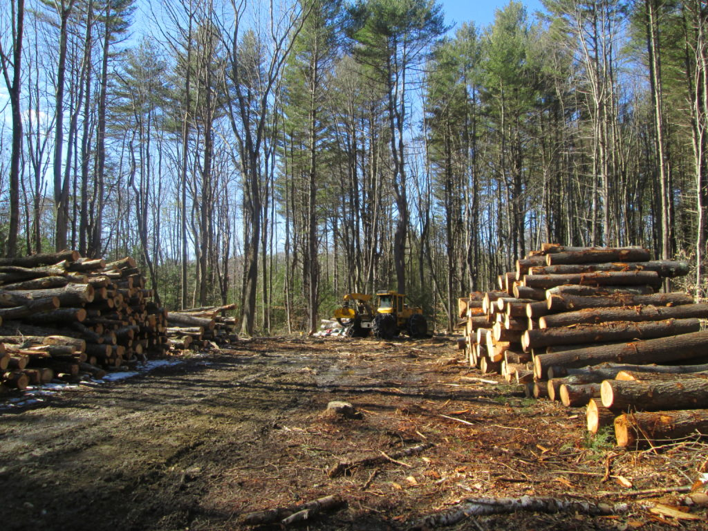 Forest Cutting Practices Workshop for Licensed Harvesters @ Old Barn at Myles Standish State Forest