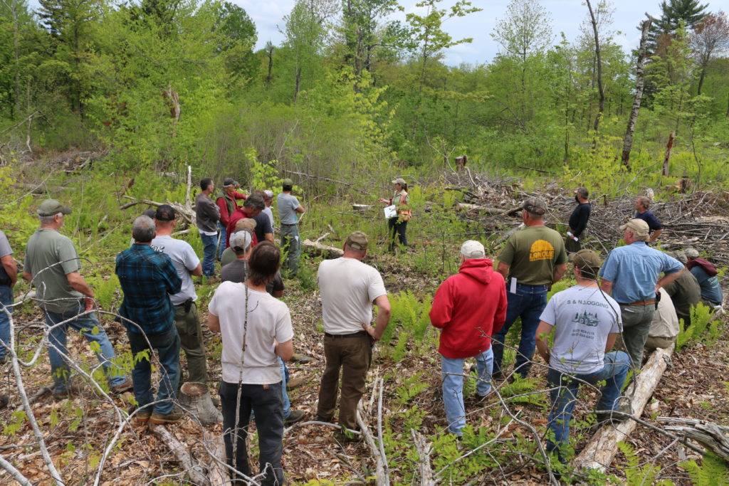 Forest Cutting Practices Workshop for Licensed Harvesters @ Buckland Shelburne Community Center