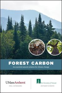 Introduction to Forests, Carbon Sequestration and Carbon Markets webinar @ online