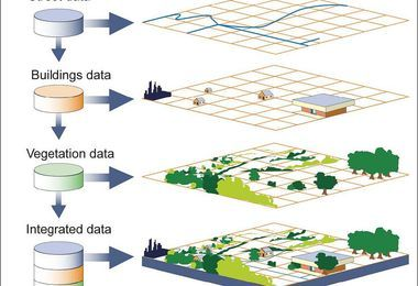 Mapping & Spatial Data Applications for Arborists: A Continuing Discussion webinar @ online
