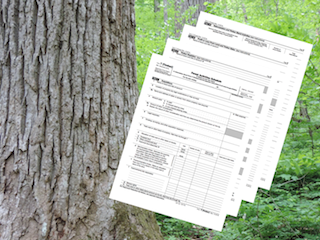 The Top Five Ways Forest Landowners Can Save Tax Dollars webinar @ online