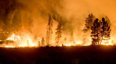Wildland Fires & Deficit Farm Soil Organic Matter webinar @ online