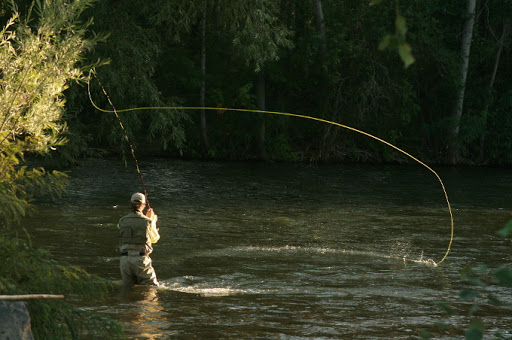 Fish in Cold Waters online program @ online